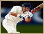 Крикет 2011